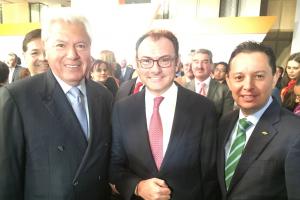 Carlos Rojo Macedo, Luis Videgaray, Carlos Hank Rhon